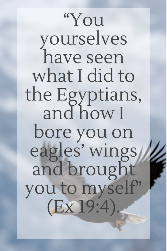 """You yourselves have seen what I did to the Egyptians, and how I bore you on eagles' wings and brought you to myself"" (Ex 19-4)."