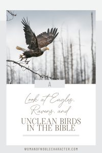 "An image of an eagle flying over trees with an overlay of text that says, ""A Fascinating Look at Eagles, Ravens and Unclean Birds in the Bible"""