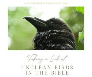 "An image of a raven looking up with an overlay of text that says, ""A Fascinating Look at Eagles, Ravens and Unclean Birds in the Bible"""