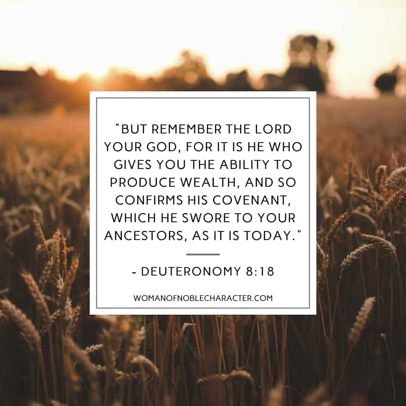 An image of a wheat field at sunset and Deuteronomy 8:18 quoted