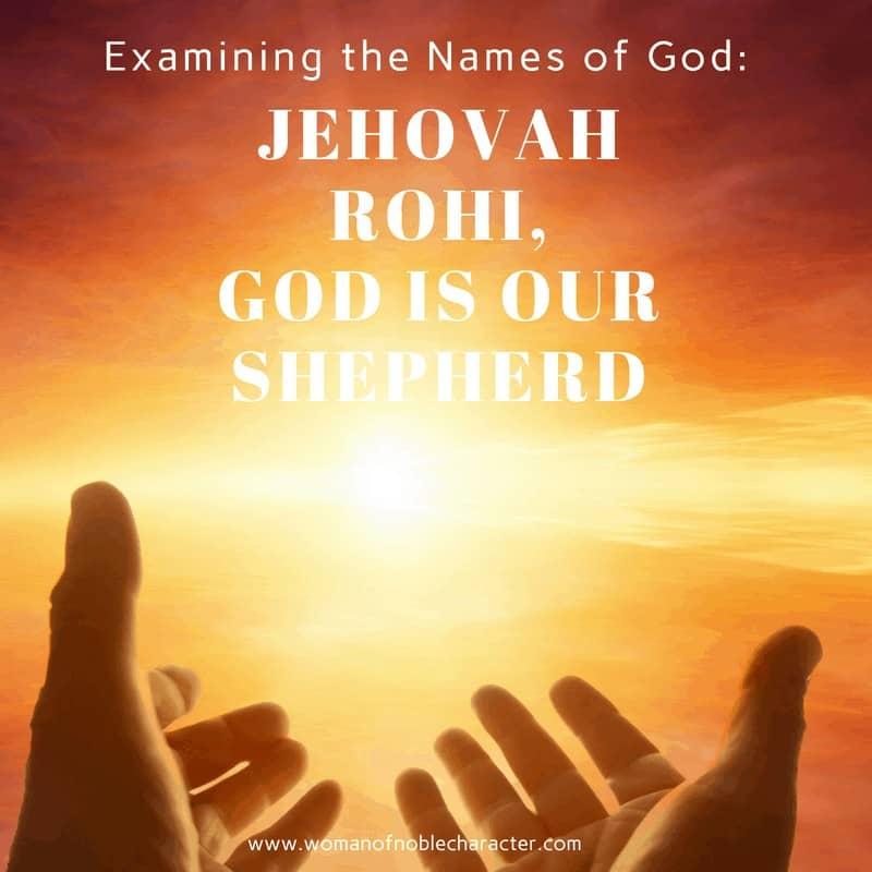 Jehovah Rohi