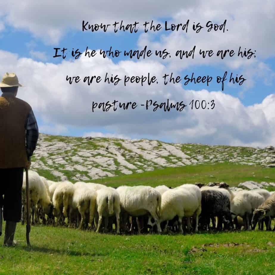 Jehovah Raah Psalms 100_3