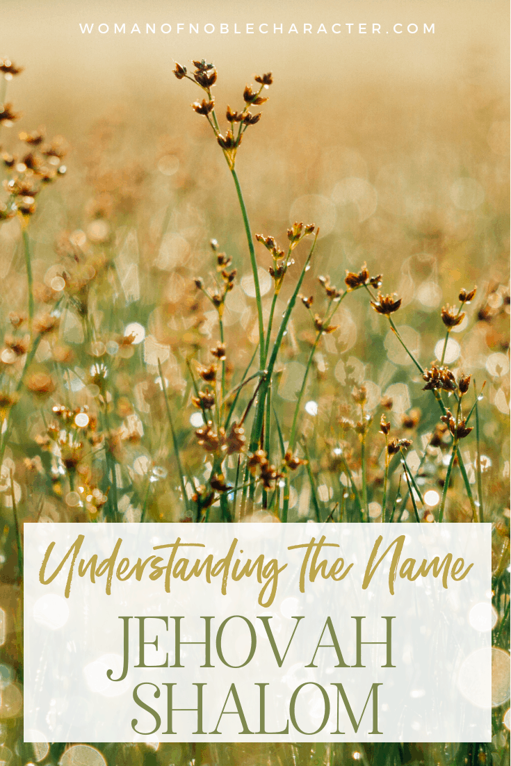 An image of a field of wildflowers and text that says Understanding the Name Jehovah Shalom