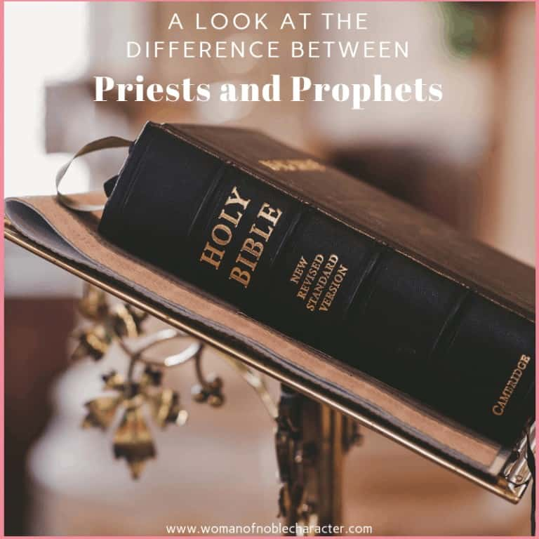 A Look At The Difference Between Priests And Prophets