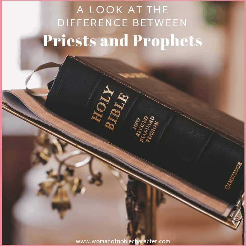 A Look At The Difference Between Priests And Prophets 2