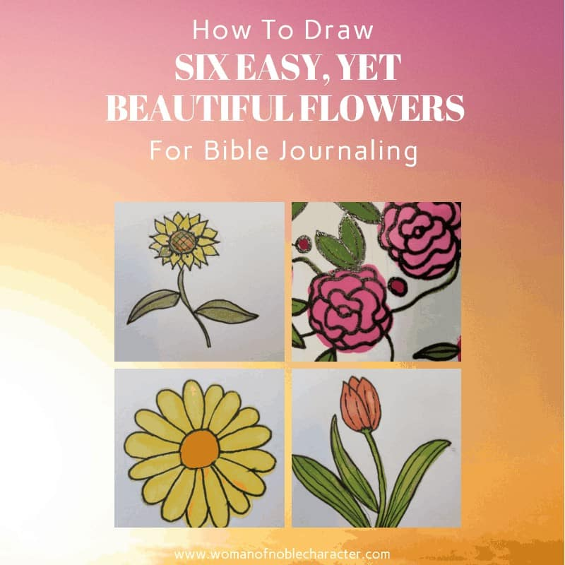 How To Draw Six Easy, Yet Beautiful, Flowers For Bible Journaling 3