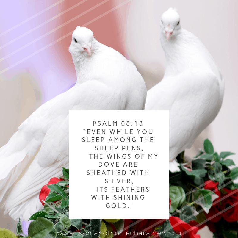 doves, Psalm 68:13