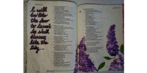 Bible journaling Hosea painting lilacs