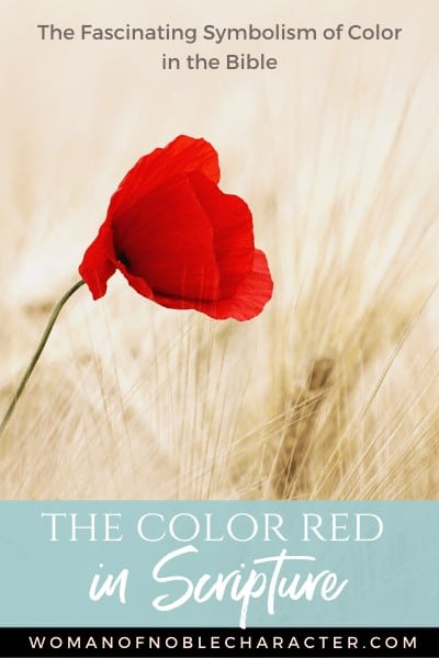 Symbolism of the color Red in the Bible