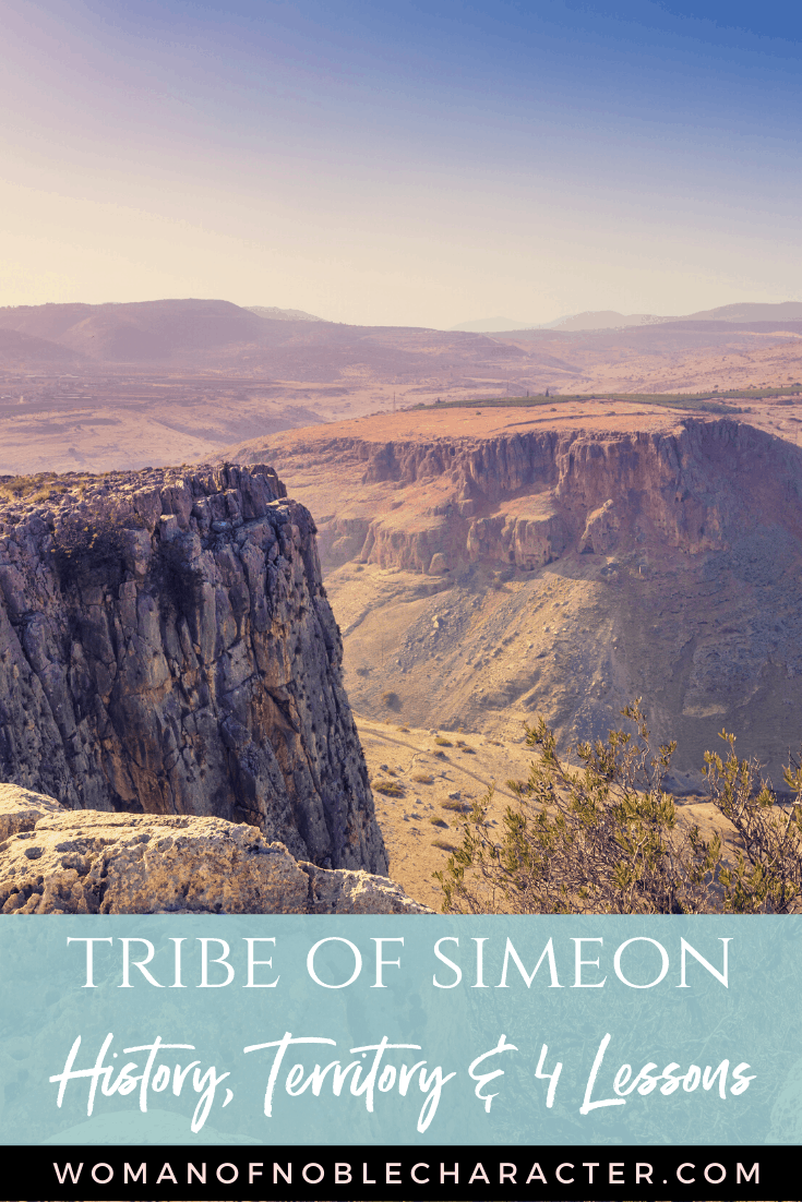 "An image of the Israeli desert with a text overlay that reads ""The Tribe of Simeon - History, Territory and 4 Lessons"