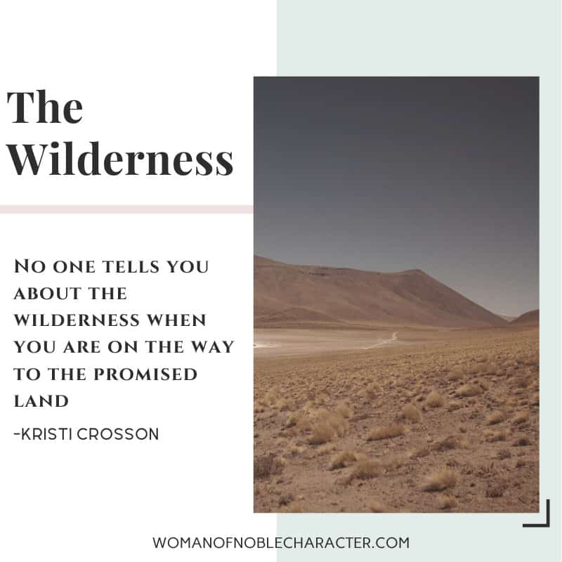 Trusting God in the Wilderness - an image of the desert