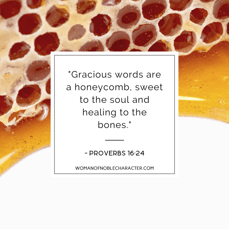 An image of honeycomb and Proverbs 16:24 quoted