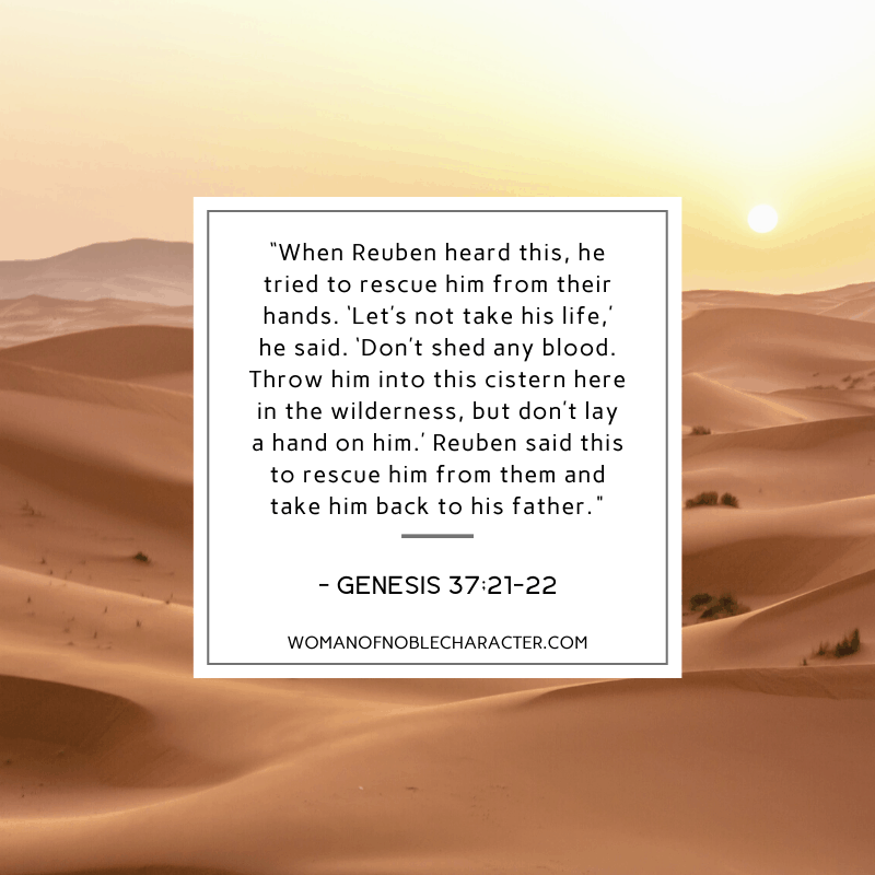 an image of the desert and Genesis 37:21-22 quoted