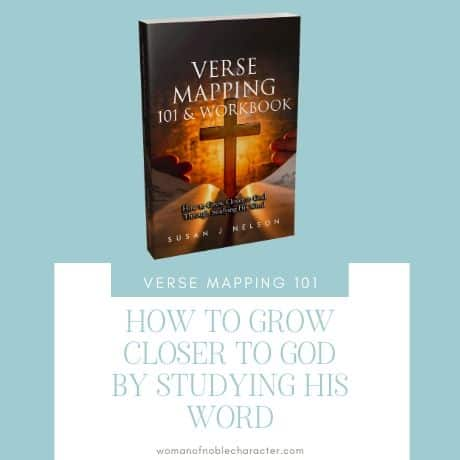 Verse Mapping 101 and Workbook Book by Susan J Nelson