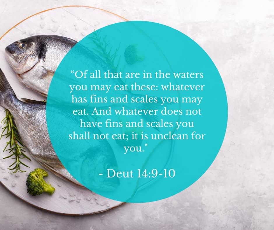 image of 2 fish on a plate with broccoli and Deuteronomy 4:9-10 quoted
