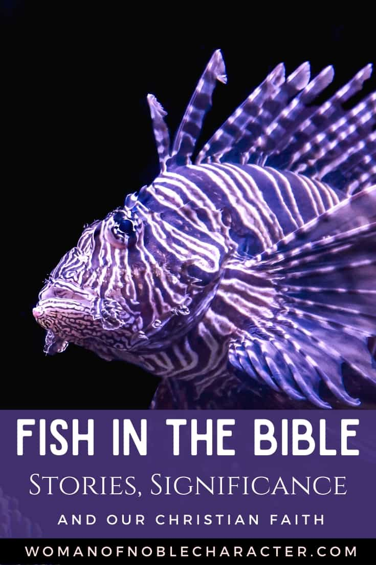 An image of a purple tropical fish - Fish in the Bible