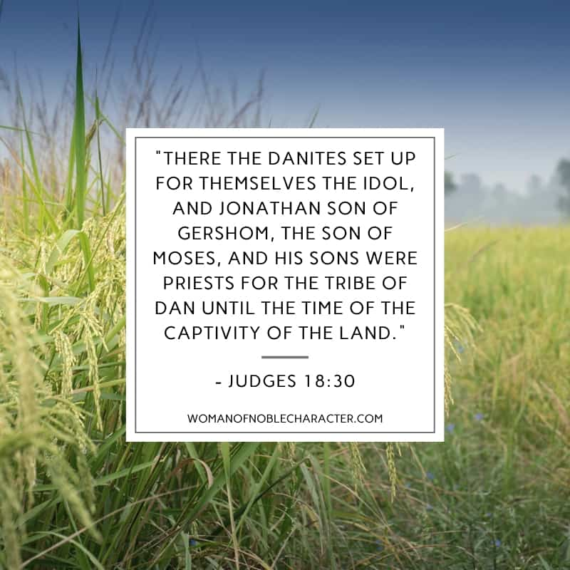 an image of a field of grass and Judges 18:30 quoted over it