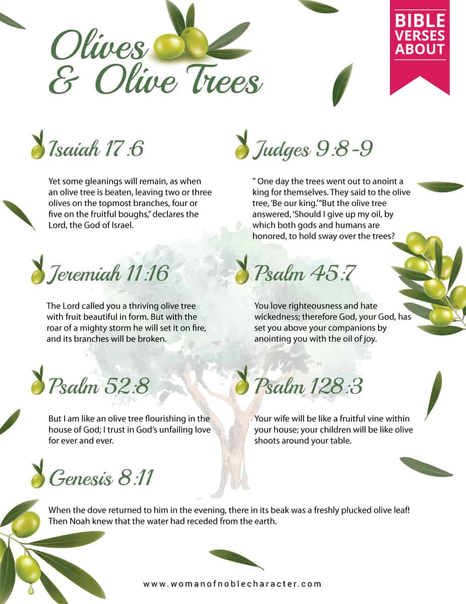 Bible-verses-about-Olives-and-Olive-Trees