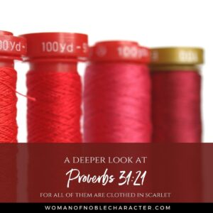 A Deeper Look at Proverbs 3121 For all of them are clothed in scarlet