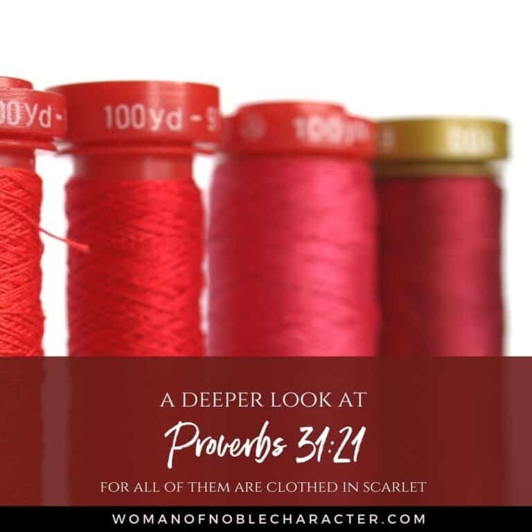 How to Clothe Your Family in Scarlet: Deeper Look at Proverbs 31:21