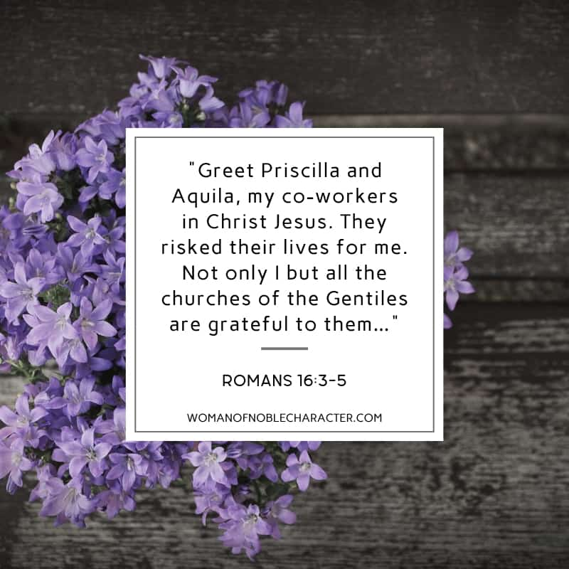 An image of lilacs on a dark, wooden background and Romans 16:3-5 quoted