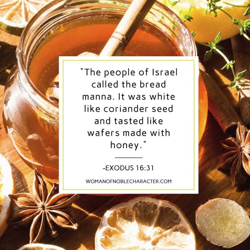 An image of a jar of honey with the quote,