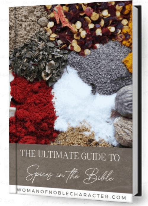 The Ultimate Guide to spices in the Bible, biblical spices