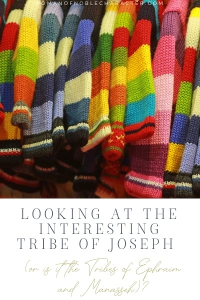 The Interesting Tribe of Joseph (or is it the Tribes of Ephraim and Manasseh)?