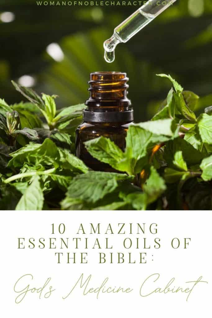 "An image of an essential oil bottle surrounded by a plant with the title, ""10 Amazing Essential Oils of the Bible_ God's Medicine Cabinet"""