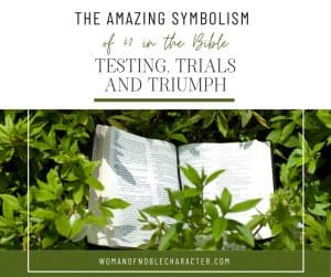 An image of bible laying on top of a plant with the title,