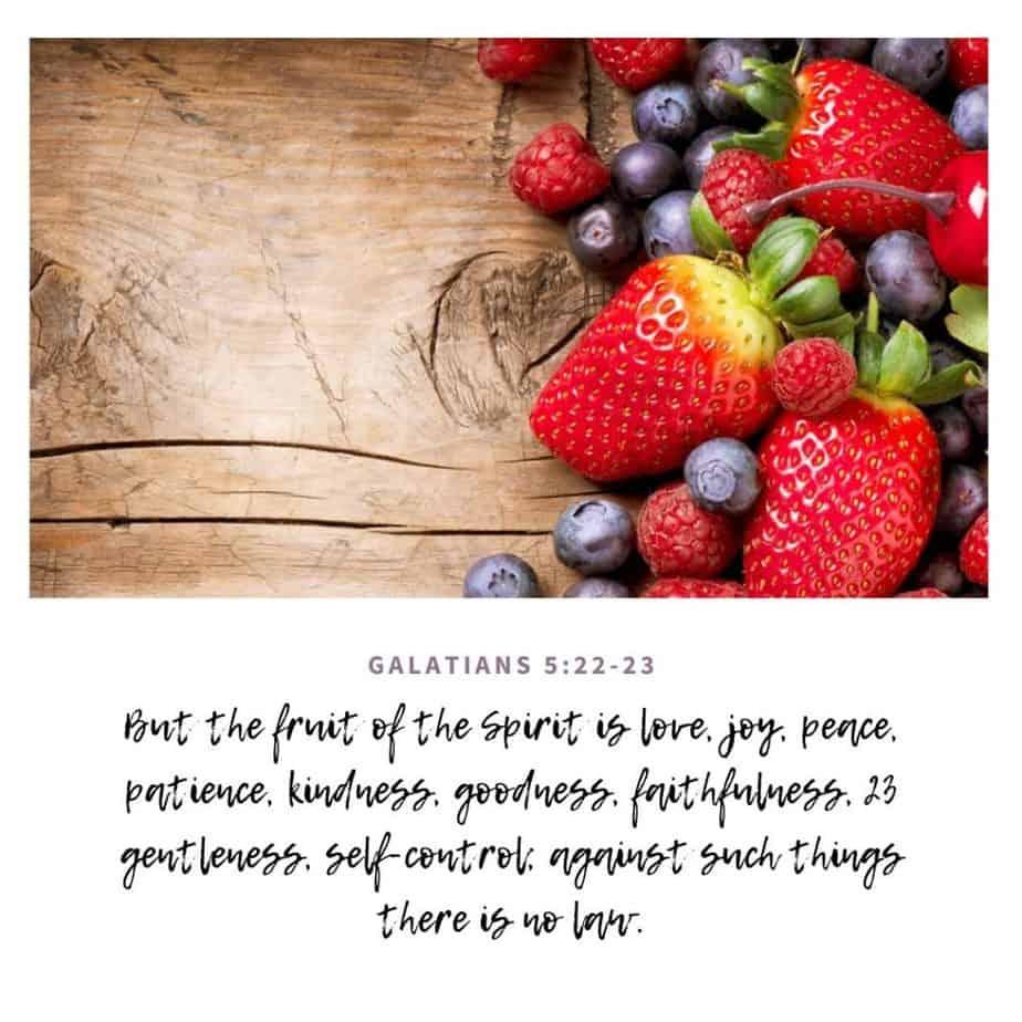 berries on wood background, abide in Him, fruit of the spirit Galatians