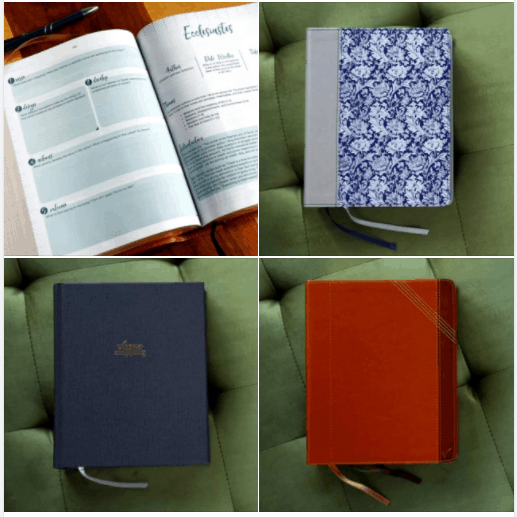 cover designs of NIV Verse Mapping Bible