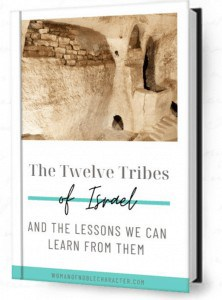 12 tribes of Israel ebook cover