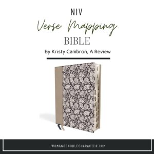 NIV Verse Mapping Bible review