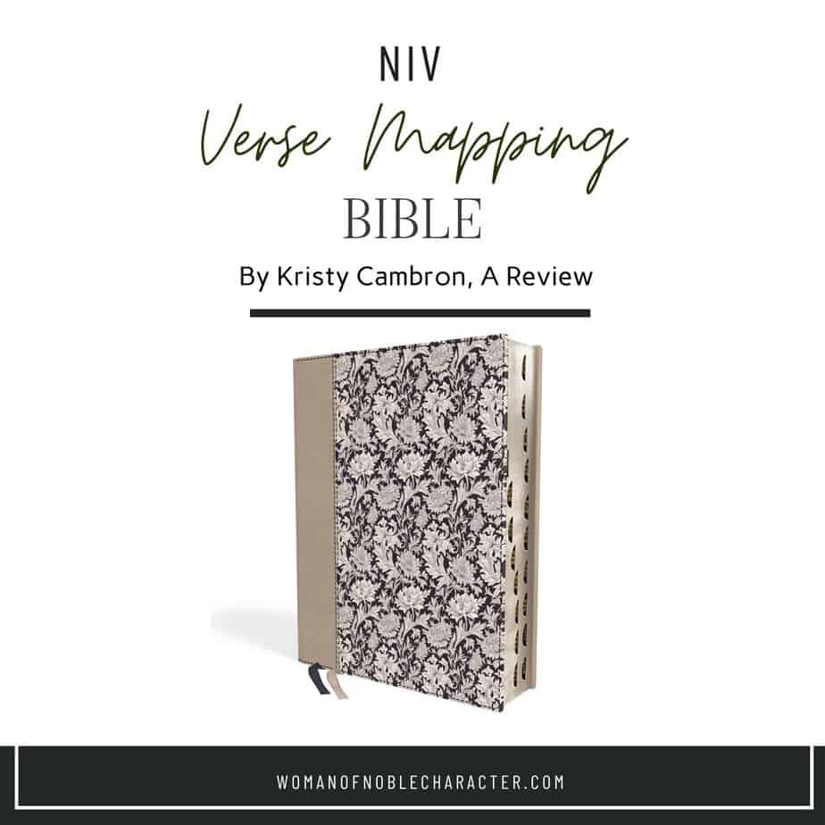 NIV Verse Mapping Bible: What it is, Features and Review