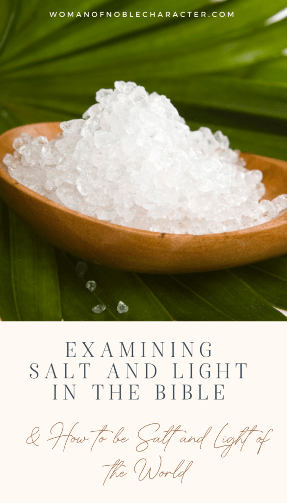 salt on wooden spoon in front of palm leaves; salt and light of the world
