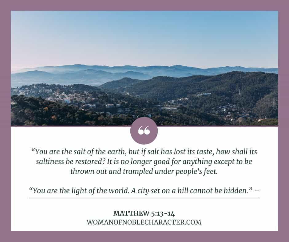 city on a hill; Matthew 5:13-14; be salt and light