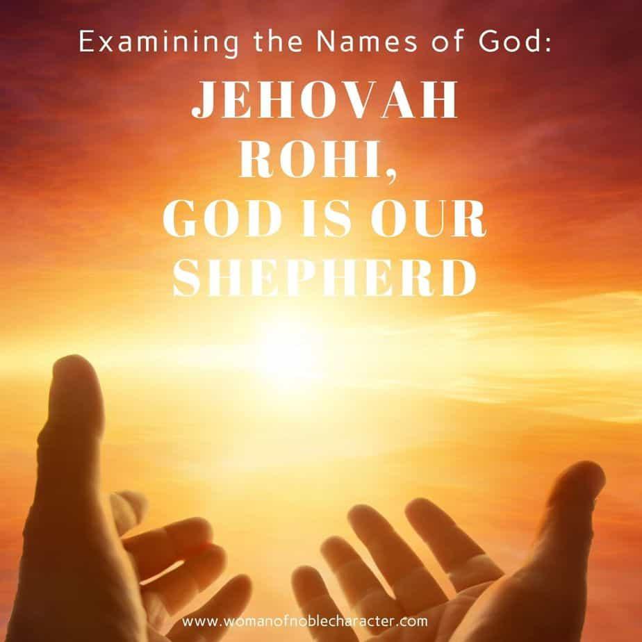 Jehovah Rohi: Examining the Names of God