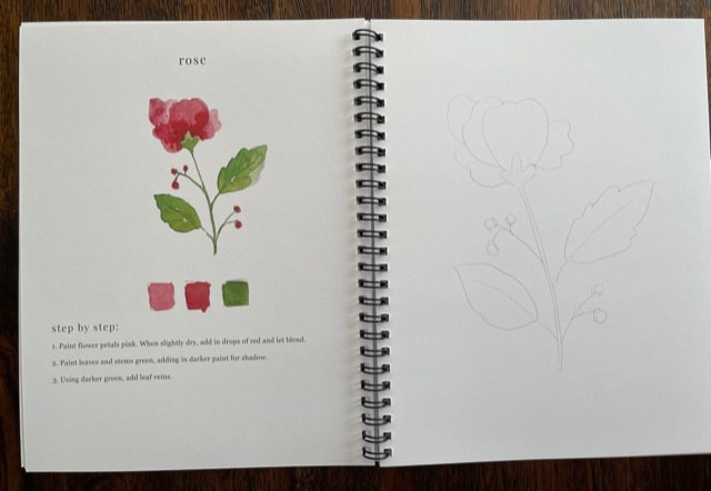 Emily Lex watercolor workbook flowers