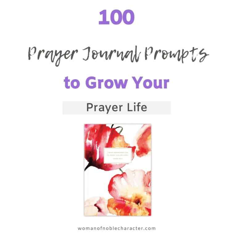 100 Prayer Journal Prompts to Help Your Prayer Life Blossom