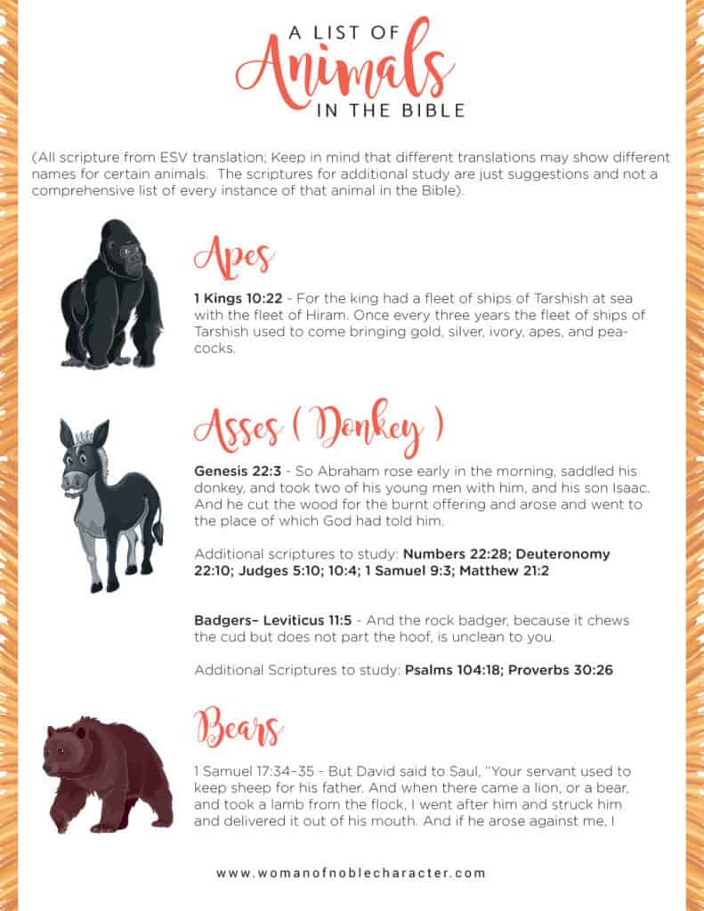 Bible verses about animals, animals in the Bible,