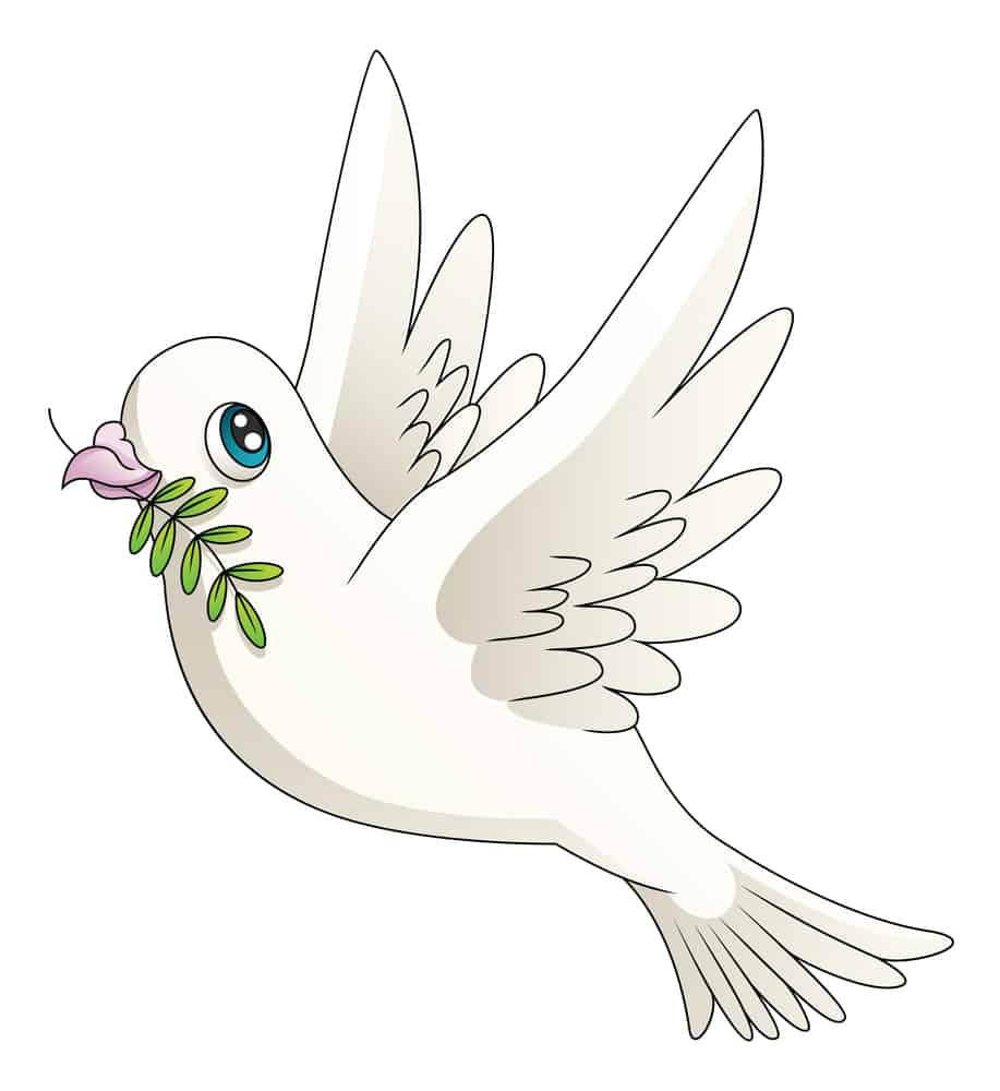 dove with olive branch; animals of the Bible