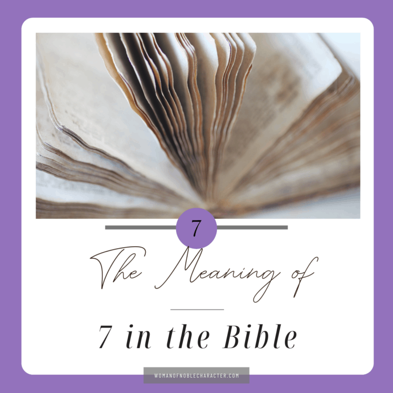 The Significance of 7 in the Bible and 3 Key Themes