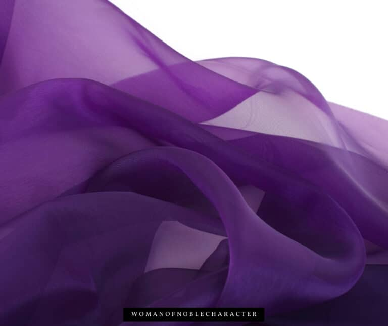 She is Clothed in Fine Linen and Purple: Looking Closer at Proverbs 31:22