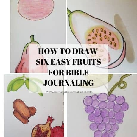 how to draw fruit for Bible journaling