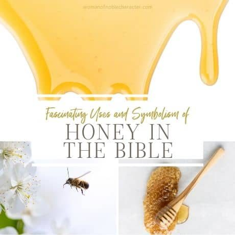 Fascinating Uses and Symbolism of Honey in the Bible