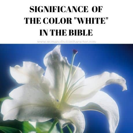 Significance of the color white