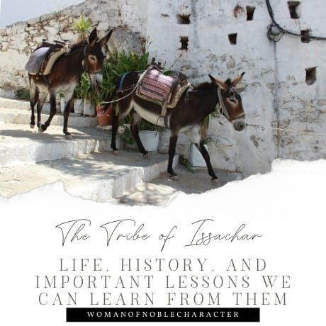 The Tribe of Issachar - Life, History, and Important Lessons We Can Learn From them