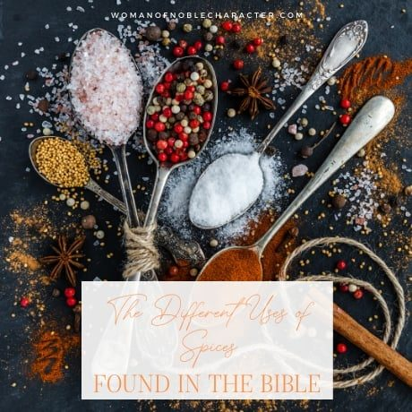 The Ultimate Guide to Spices in the Bible