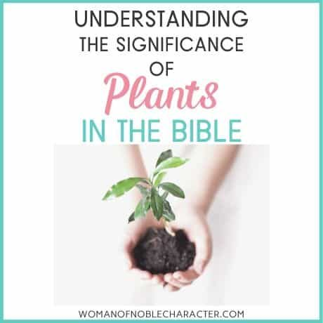 plants in the Bible